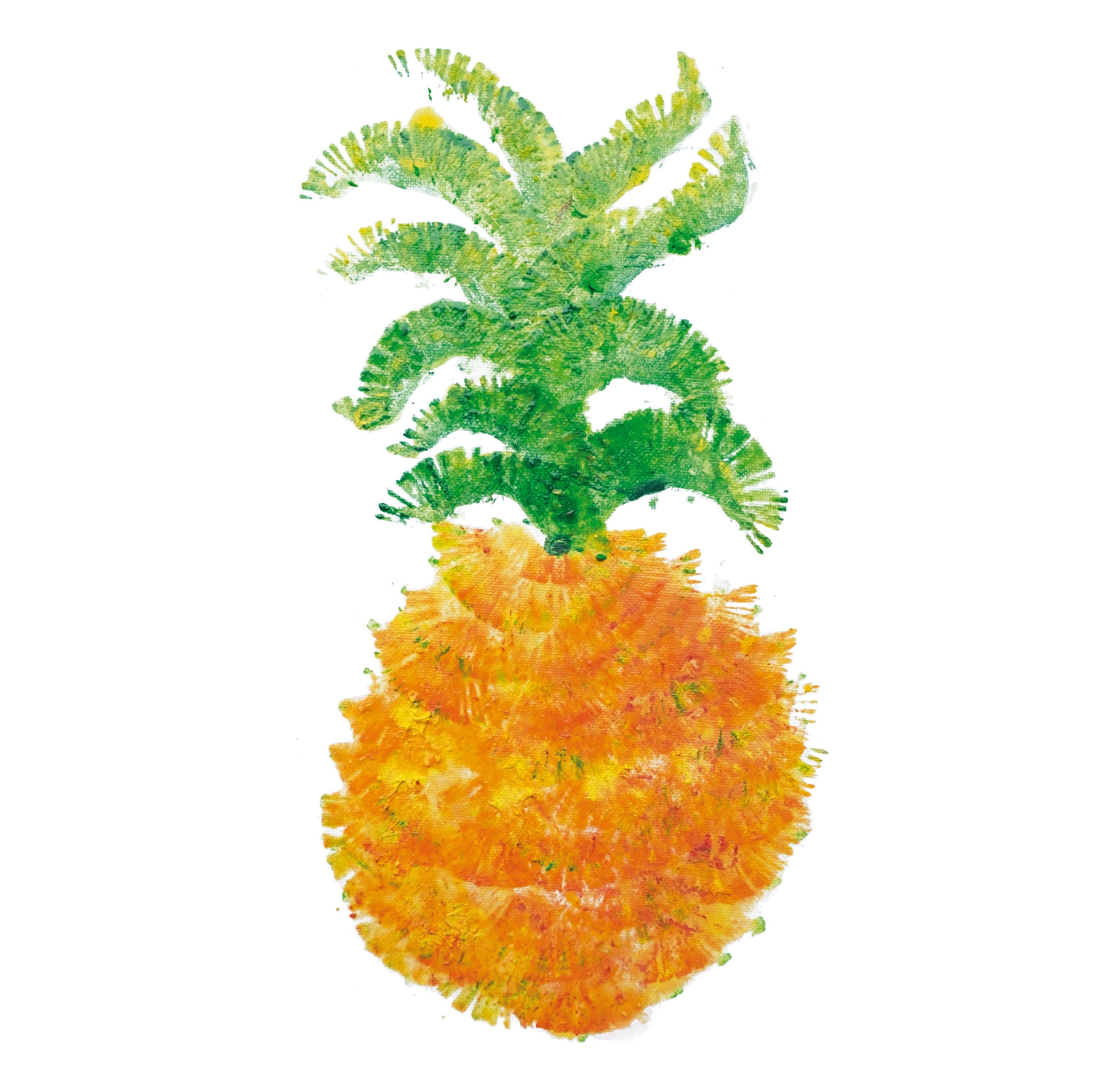 20171005039_Ananas