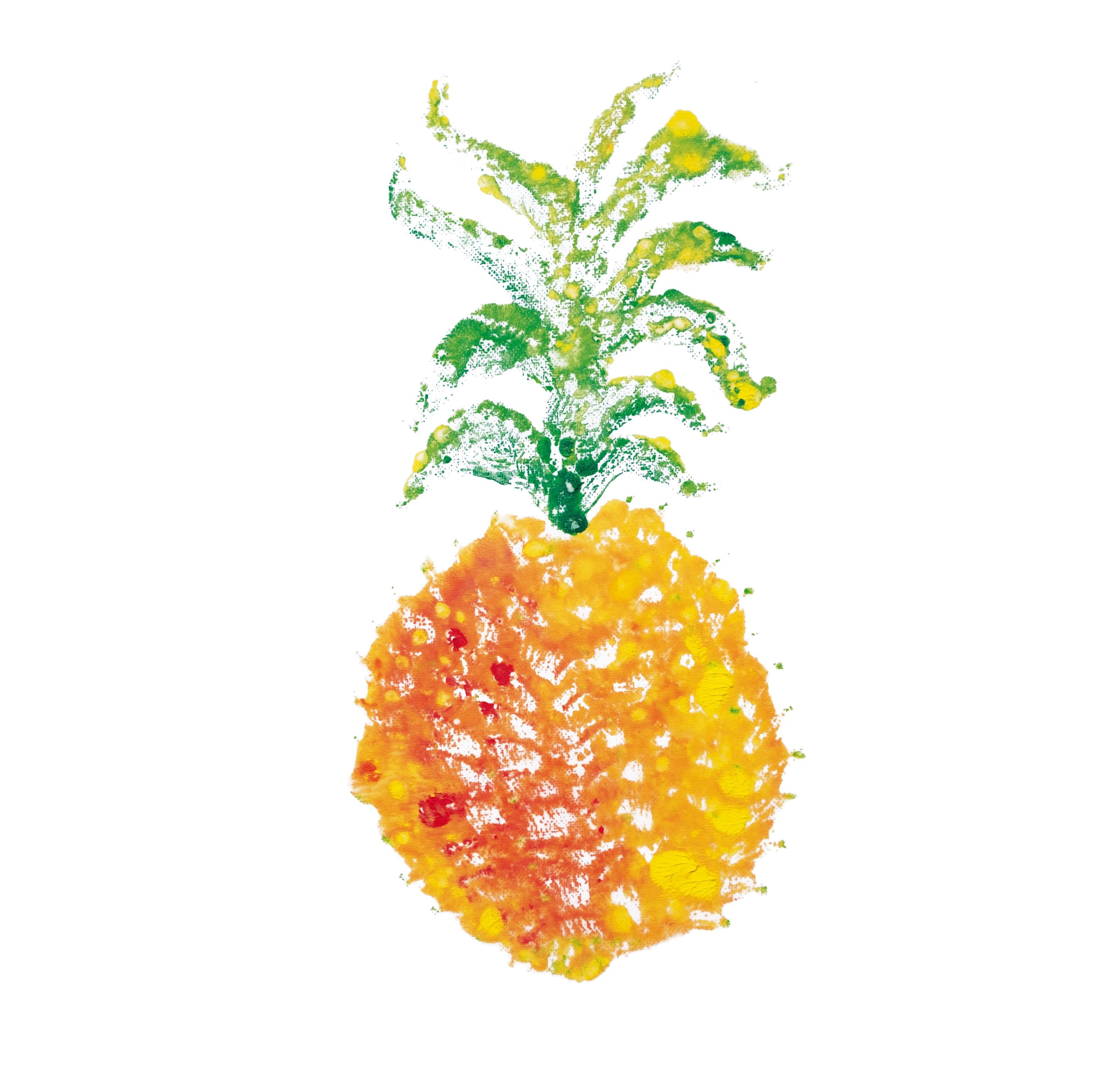 20171005043_Ananas