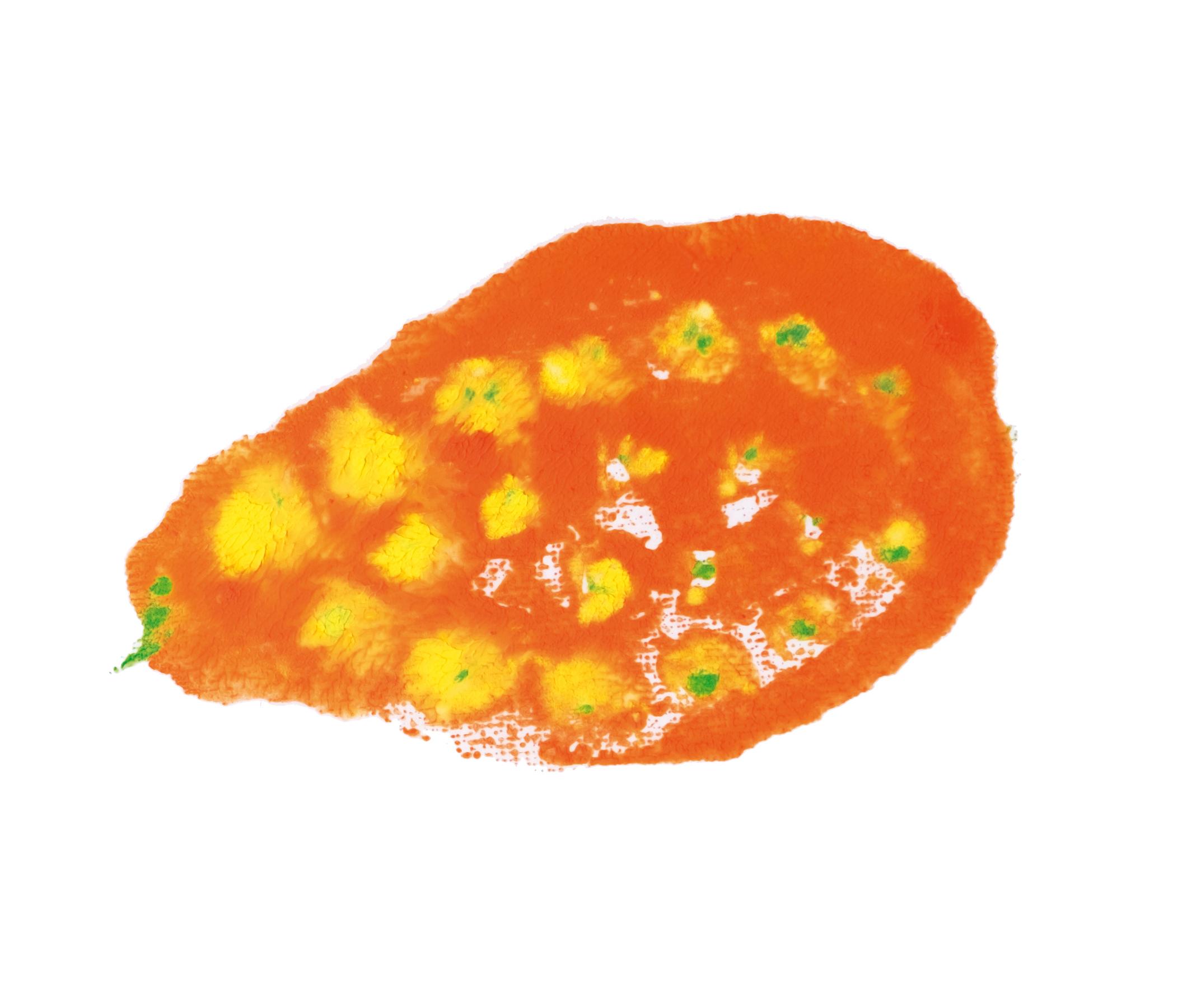 20171005052_Frucht